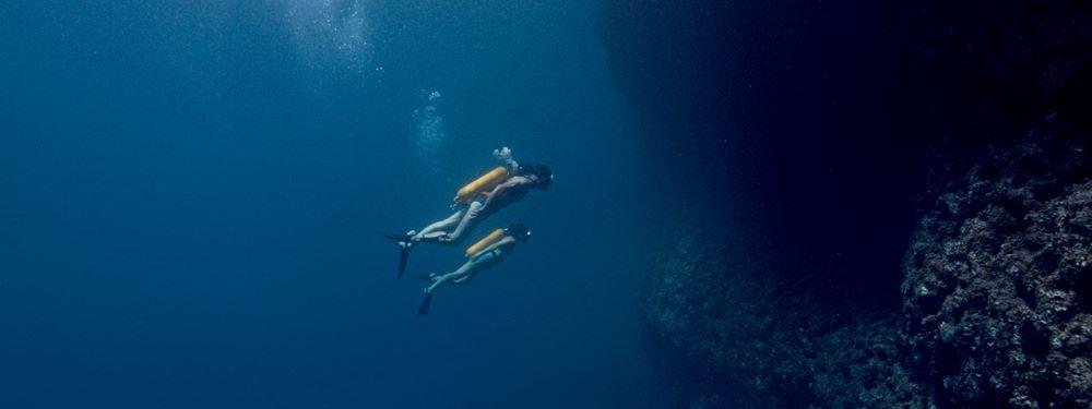 commandant cousteau,cousteau,cinéma,jérôme salle,l'odyssée,romain duris,pierre nimey,jacques-yves cousteau,mer,aventure,zulu,anthony zimmer,calypso