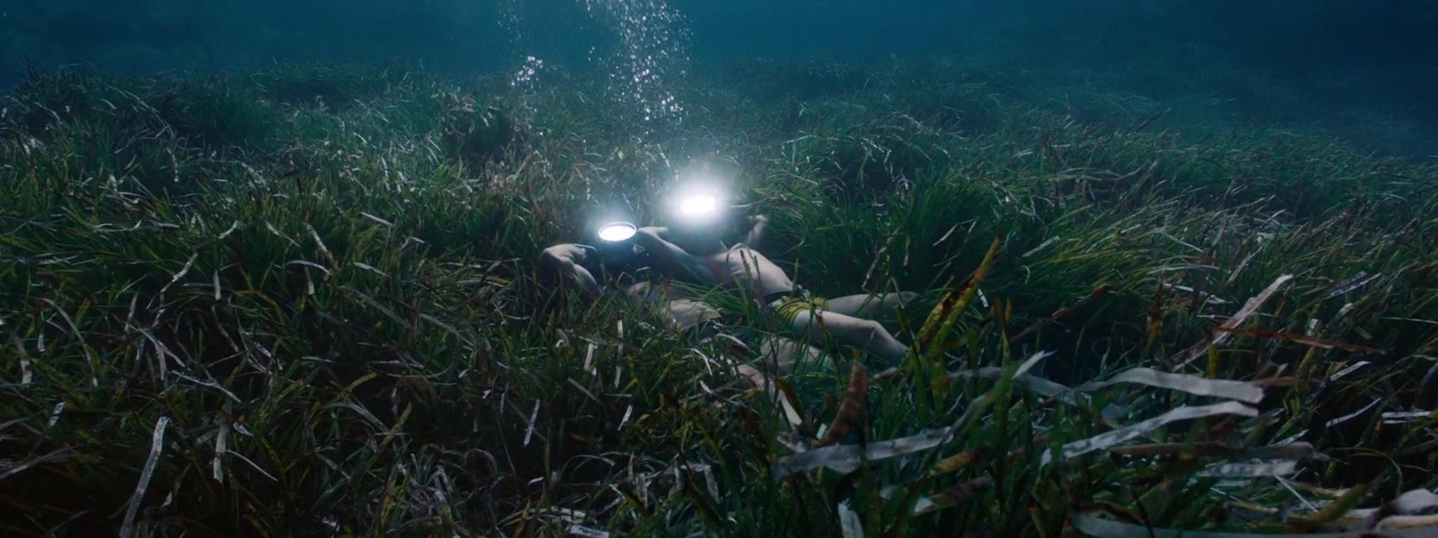 cousteau,biopic,l'odysssée,jacques-yves cousteau,océans,cinéma,jérôme salle,écologie,précurseur,documentaire,série,l'odyssée sous-marine de l'équipe cousteau,le monde du silence,louis malle,haroun tazieff,paul-emile victor