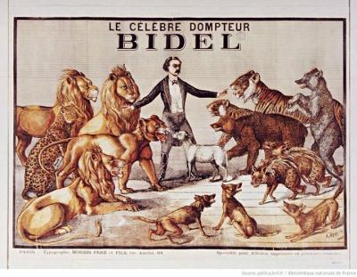 bidel,fauves,belluaire,cirques,cirque,mer,marin,christian cailleaux
