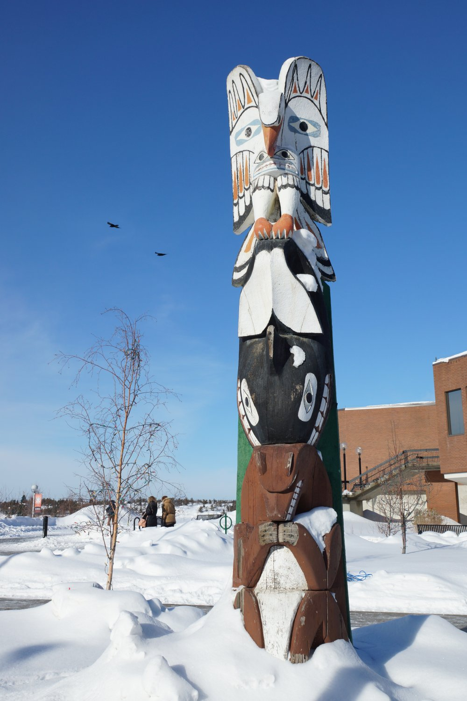 canada,grand nord,expédition,le pays des fourrures,aventure,hemon,simonneau