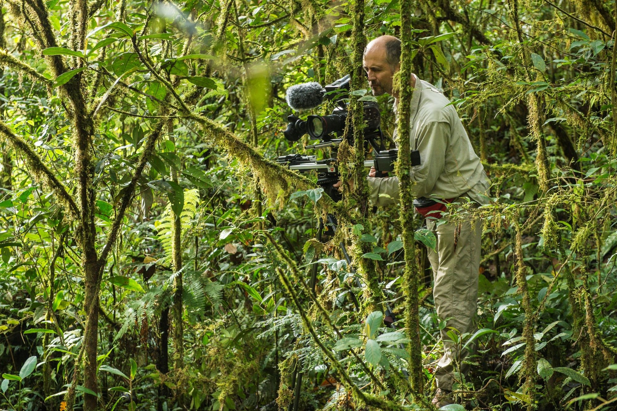 film, documentaire, nature, écologie, luc marescot, Francis halle, crowdfunding, campagne,