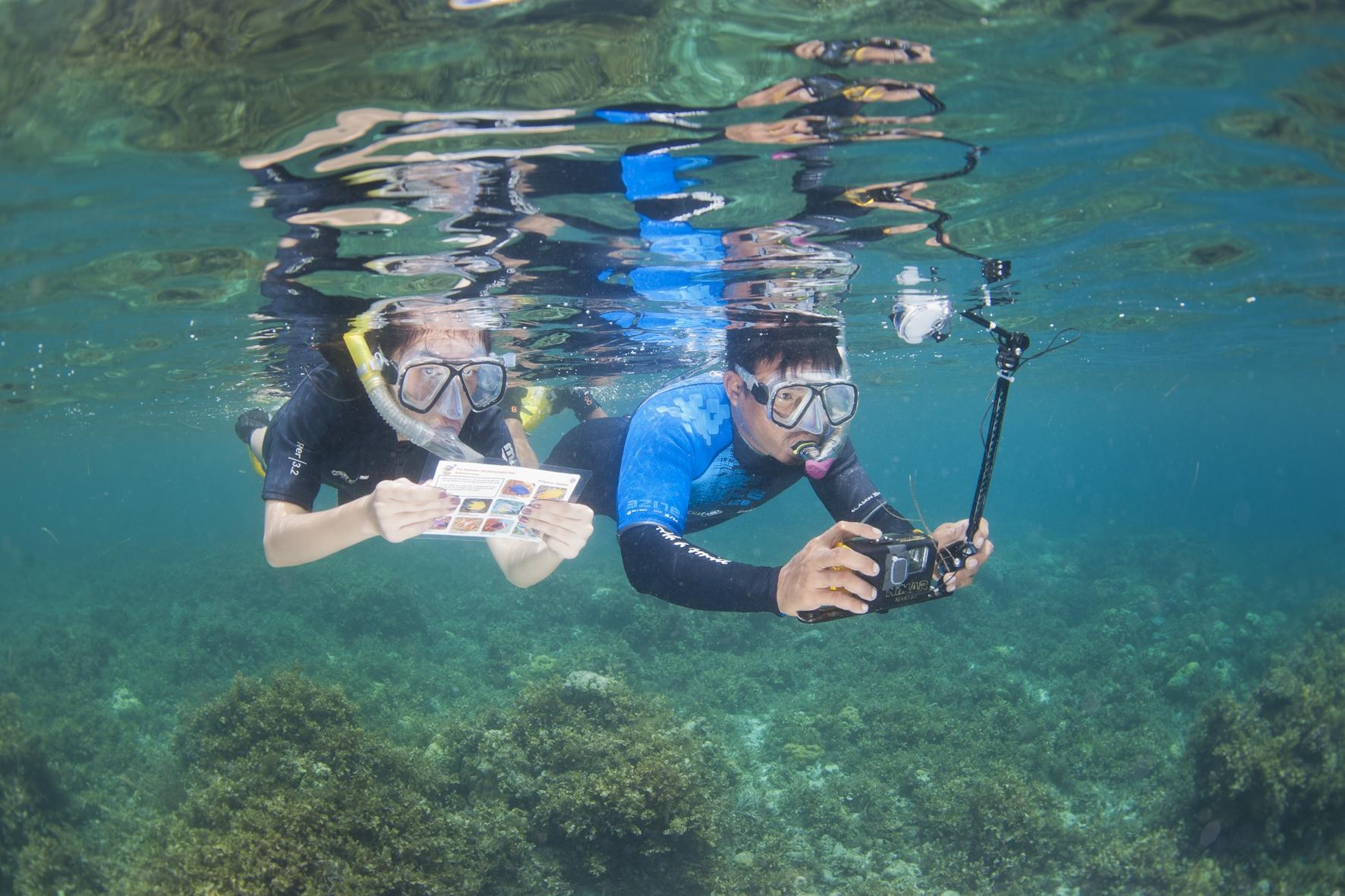 raid,défi,plongée,chasses aux trésors,objectif atlantide,enquete policiere,sous-marine-bohol,philippines,mai 2018,daniel méouchy