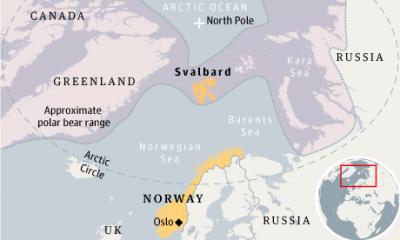 Svalbard-polar-bears-008.png