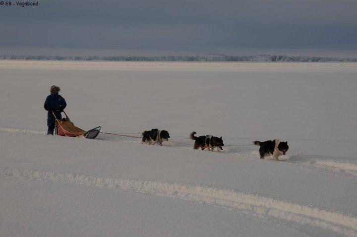vagabond,voilier polaire,aventures,famille,groenland,arctique,tf1 reportage,film,katia chapoutier,eric brossier,france pinczon du sel