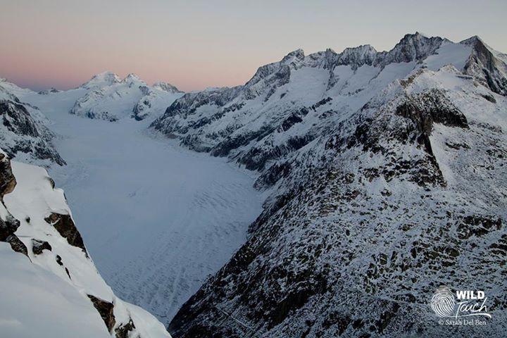 expedition,antarctique,polaire,wild-touch,luc jacquet,vincent munier,laurent ballesta,cop 21
