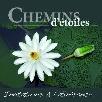 OEP 15 CHEMINSDETOILES.jpg