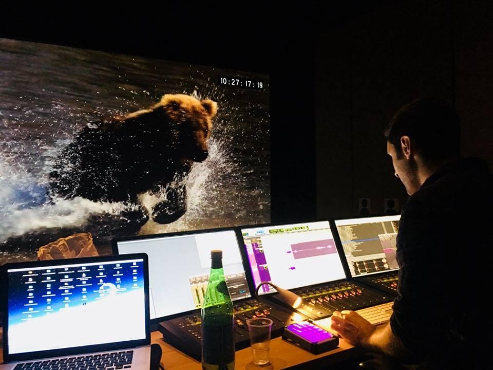 film,documentaire,fort comme un ours,rémy marion,thierry robert,le cinquième rêve,arte tv