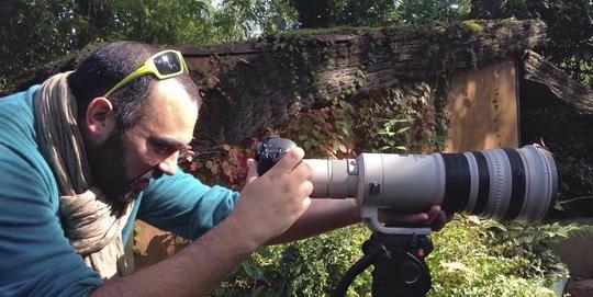 documentaire,film,nature,népal,animaux,hommes,planète,fabien lemaire,tv